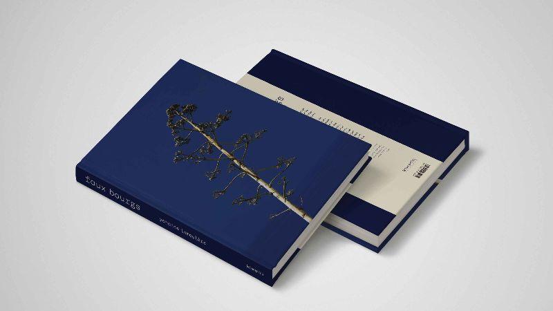 faux bourgs Sortie du livre, rencontre et séance de signatures Yohanne Lamoulère